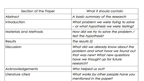 Research Paper Sections' document